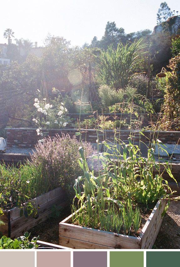 Achados da Bia | Inspiração do Dia | Jardim | Caixas de madeira | Ideias | Décor