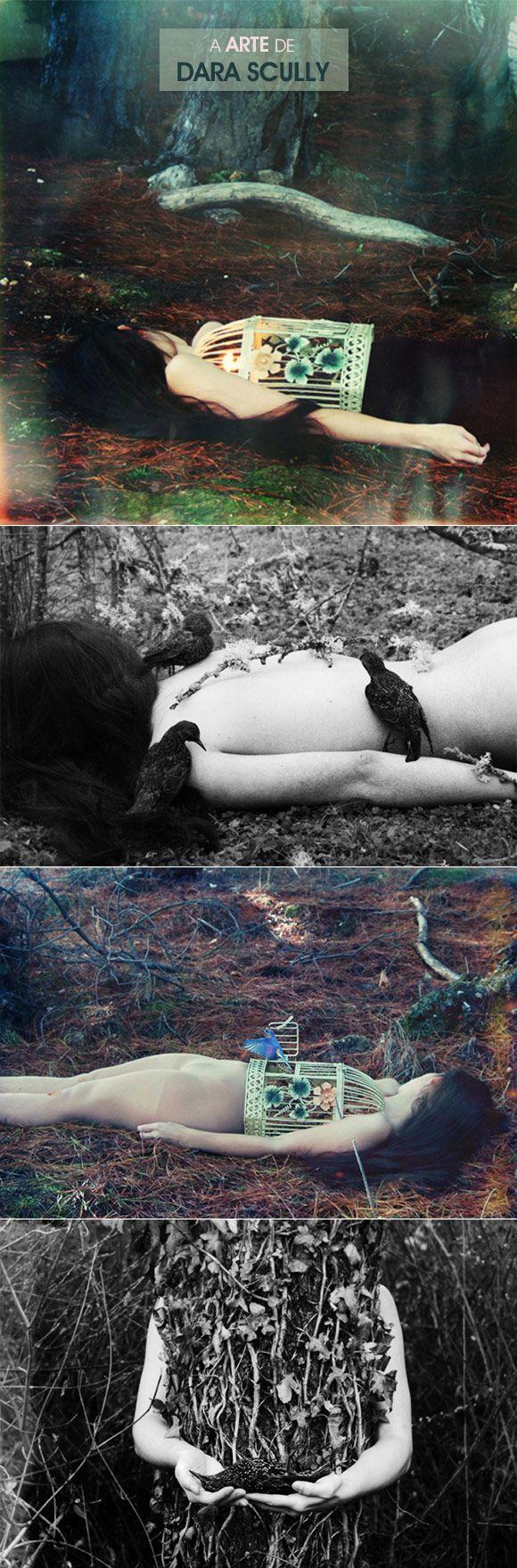 Achados da Bia | Arte | Dara Scully