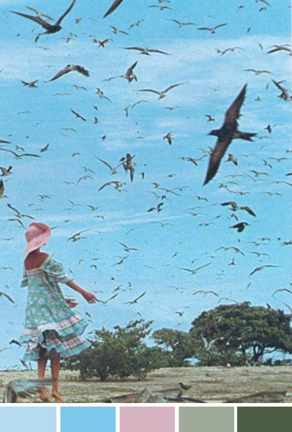 Acados da Bia | Inspiração do Dia | Free to fly