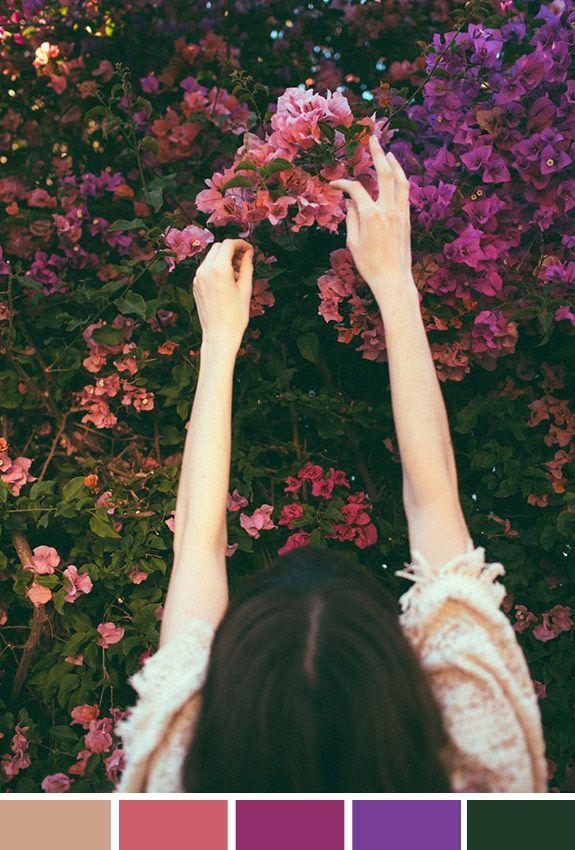 Achados da Bia | Inspiração do Dia | Colhendo flores