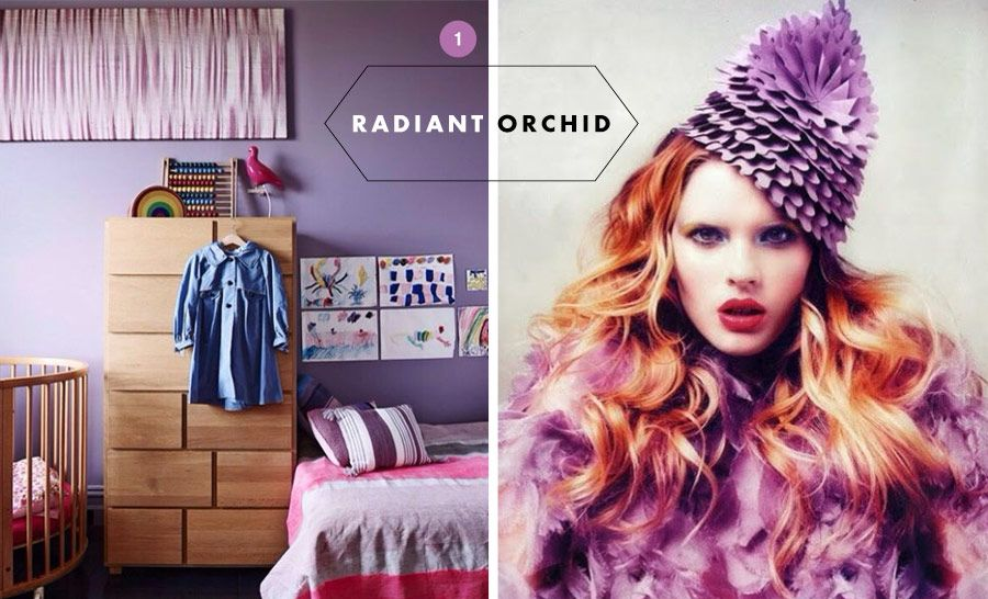 os Achados | Pantone 2014 | Radiant Orchid